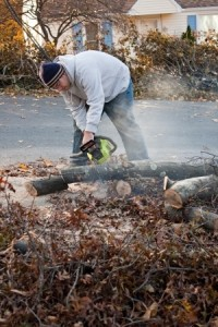 Man cutting tree limbs with a chainsaw that have fallen from storm damage.