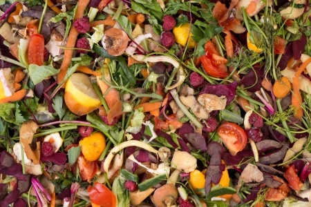 Pile of composting natural waste