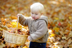 47221989 - toddler boy having fun in autumn park