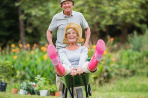 42183797 - happy senior couple playing with a wheelbarrow in a sunny day