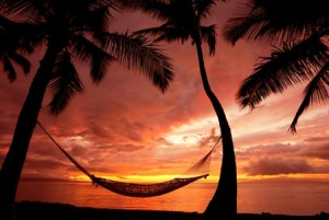 11928614 - beautiful vacation sunset, hammock silhouette with palm trees