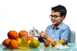 55396068 - the boy performs experiments with fruit for the lesson of biology.