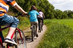 15402402 - family riding bikes