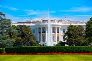 36931557 - the white house in washington dc usa united states