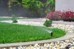 29468809 - automatic sprinkler watering grass