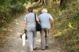 41664537 - seniors in park