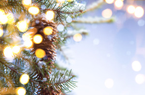 34194996 - christmas party background