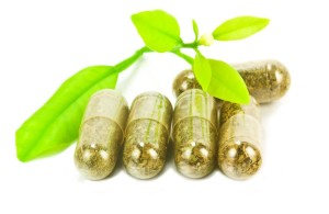 13608500 - herbal medicine pills with green plant on white background