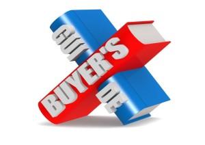 16969518 - buyer s guide