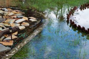 backyard flooding in florida