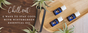 YL Blog_ChillOut_6WaysToStayCoolWithWintergreenEssentialOil_Header_US
